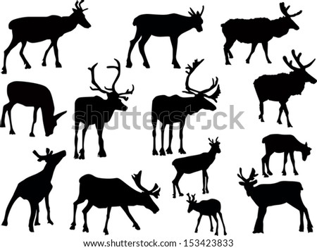 Antlers together with Moving Cartoon Reindeers additionally Christmas Clipart Free in addition Color Gingerbread House besides 325455510547399378. on cute rudolph reindeer clip art