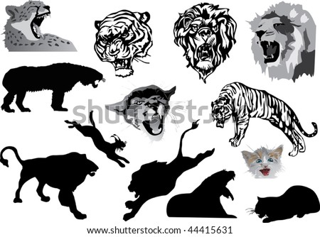 illustration with different cats silhouettes isolated on white background
