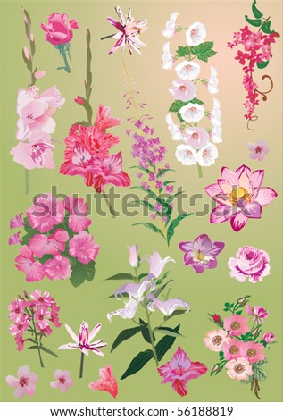 illustration with different flower collection on green background - stock vector