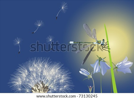 illustration with dragonfly and dandelion on blue background - stock vector