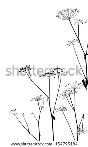 illustration with dry autumn plants isolated on white background