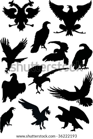 illustration with eagle silhouettes isolated on white background