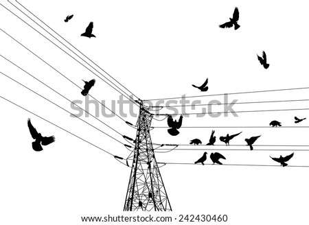 illustration with electrical pylon and birds isolated on white background - stock vector
