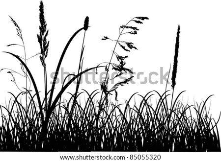 illustration with fall grass silhouettes isolated on white background