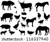 illustration with farm animals collection isolated on white background - stock photo