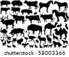 illustration with farm animals collection isolated on white background - stock vector
