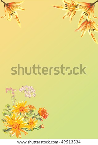 illustration with floral decoration on white background
