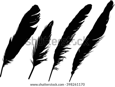 illustration with four black feathers on white background