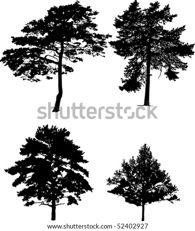 illustration with four pine silhouettes isolated on white background - stock vector