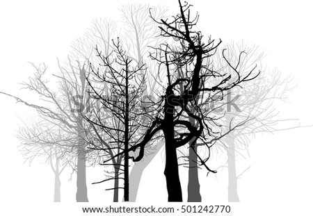 illustration with grey bare forest isolated on white background