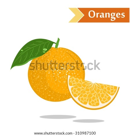 illustration with juicy and tasty fruits - oranges. - stock vector