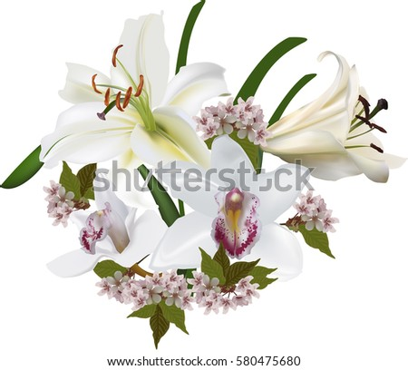 illustration with large orchid and lily flowers isolated on white background