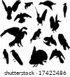 illustration with nine bird silhouettes isolated on white background - stock photo