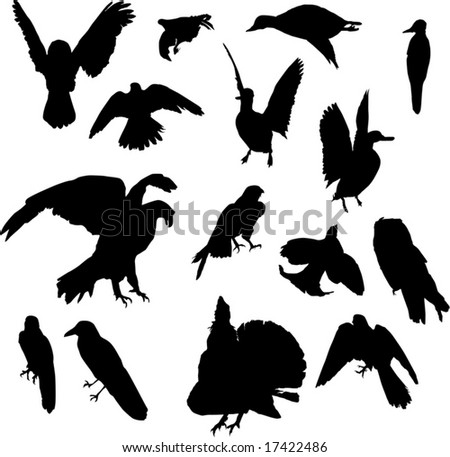 illustration with nine bird silhouettes isolated on white background