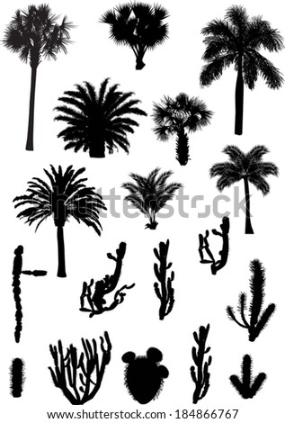 illustration with palm and cactus silhouettes isolated on white background