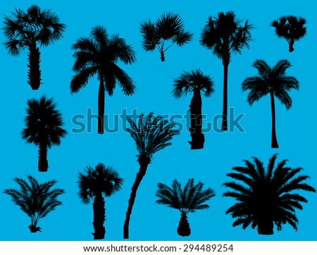illustration with palm silhouettes isolated on blue background