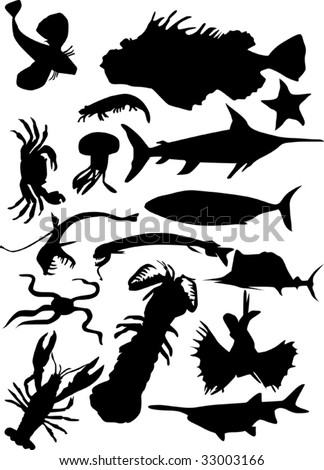 illustration with sea animals isolated on white background