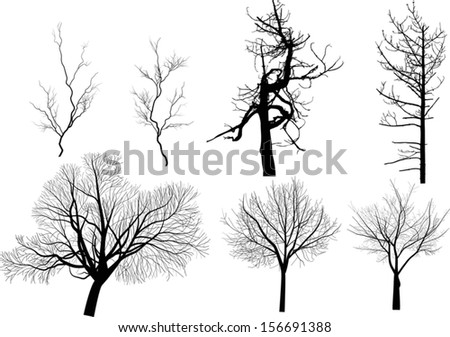 illustration with set of bare trees isolated on white background - stock vector
