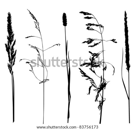 illustration with set of plant silhouettes isolated on white background - stock vector