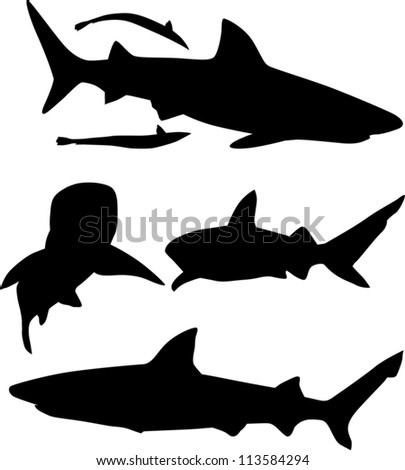 illustration with shark silhouettes collection isolated on white background - stock vector
