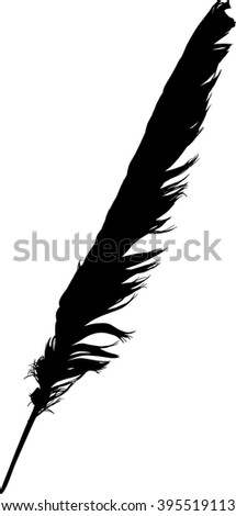 illustration with single black feather on white background