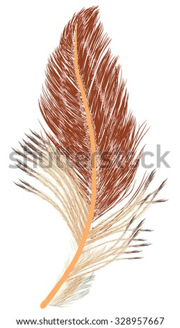 illustration with single brown feather isolated on white background