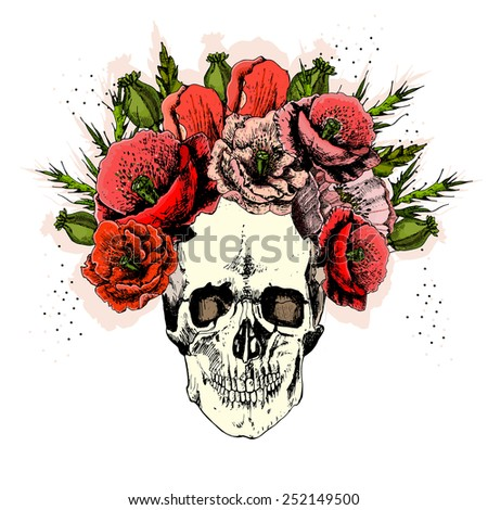 illustration with skull. hand draw.  vector. - stock vector