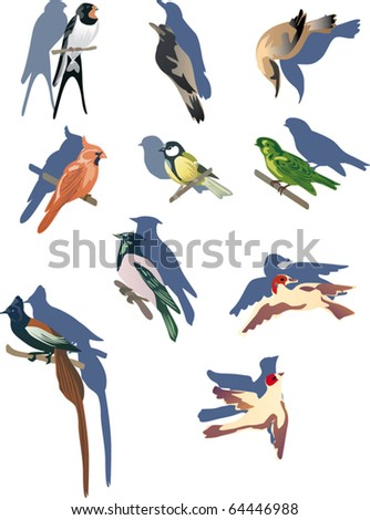 illustration with small birds isolated on white background - stock vector