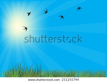 illustration with swallows in blue sky above green grass - stock vector