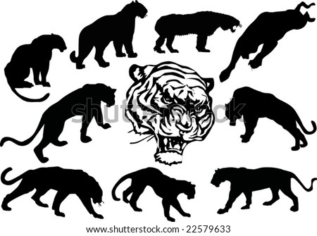 illustration with tiger silhouettes isolated on white background
