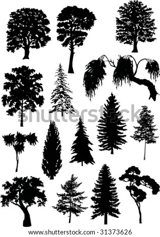 illustration with tree silhouettes isolated on white background - stock vector