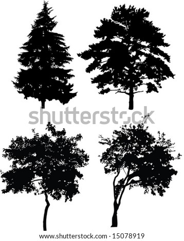 illustration with trees silhouette isolated on white background - stock vector