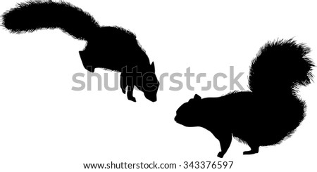 illustration with two squirrels isolated on white background