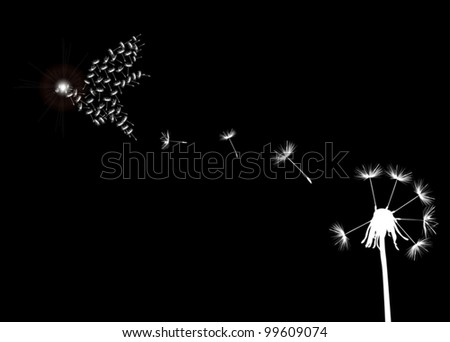 illustration with white dandelion on black background - stock vector
