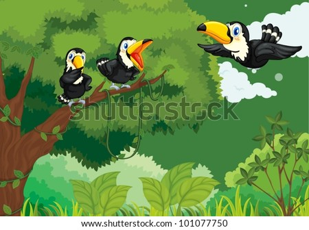 Illustrations of a family of toucans in the jungle - stock vector