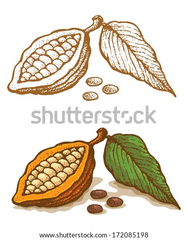 Illustrations of cocoa in retro style - stock vector