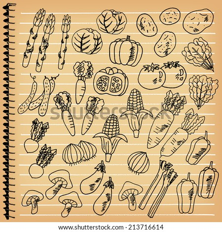 Illustrations of vegetables wrote by hand