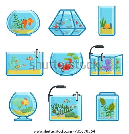 Aquarium Stock Images Royalty Free Images Vectors