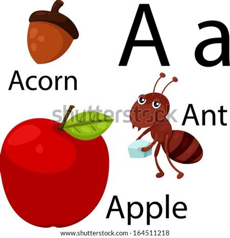 Illustrator of A alphabet - stock vector