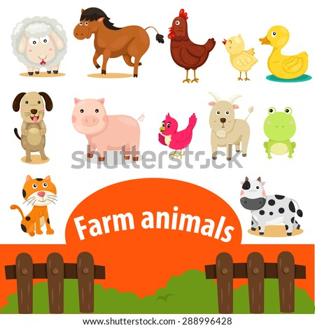 Illustrator of farm animals  - stock vector