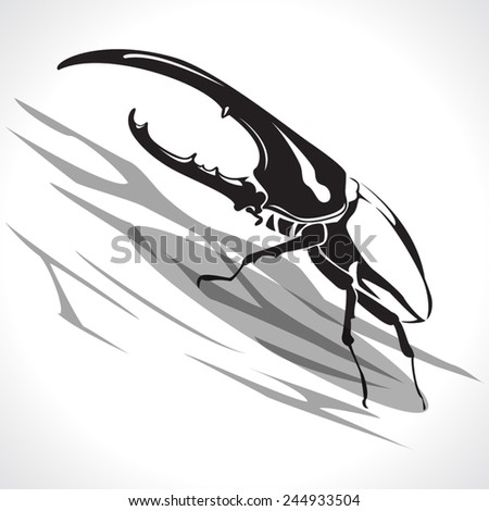 image graphic style of beetle  isolated on white background