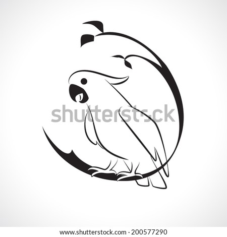 image graphic style of cockatoo  isolated on white background - stock vector