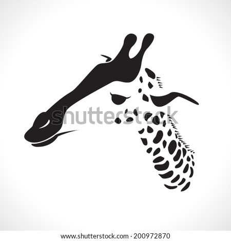 image graphic style of giraffe  isolated on white background - stock vector