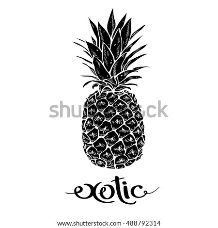 Image of black and white pineapple fruit  lettering exotic on  background. Print t-shirt, graphic element for your design. Vector illustration.