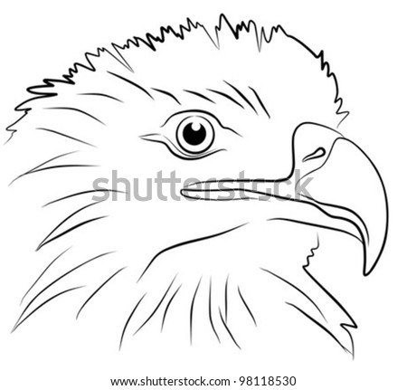 image of eagle head isolated on white background, vector illustration - stock vector