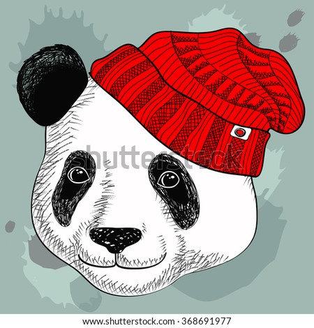 Image of panda in knitted hats. Cute attractive face bear