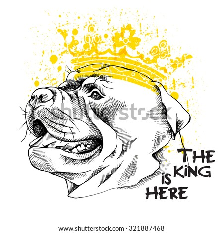 Image Portrait of a dog Staffordshire bull terrier wearing a crown. Vector illustration. - stock vector