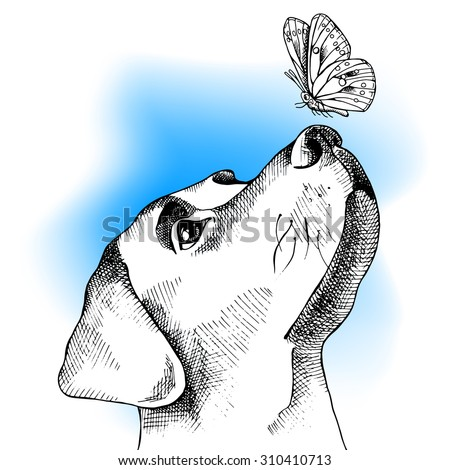 Image Profile portrait of a dog with butterfly on blue background. Vector illustration.