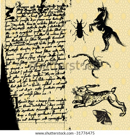 essay on medieval witchcraft