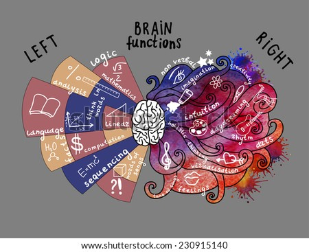 Infographic Elements. Brain concept. Hand drawn brain infographic. Left and right brain functions. - stock vector